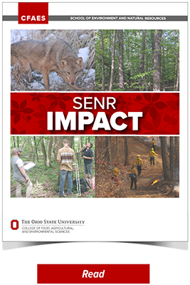 2019 SENR Impact and Project Summaries Full