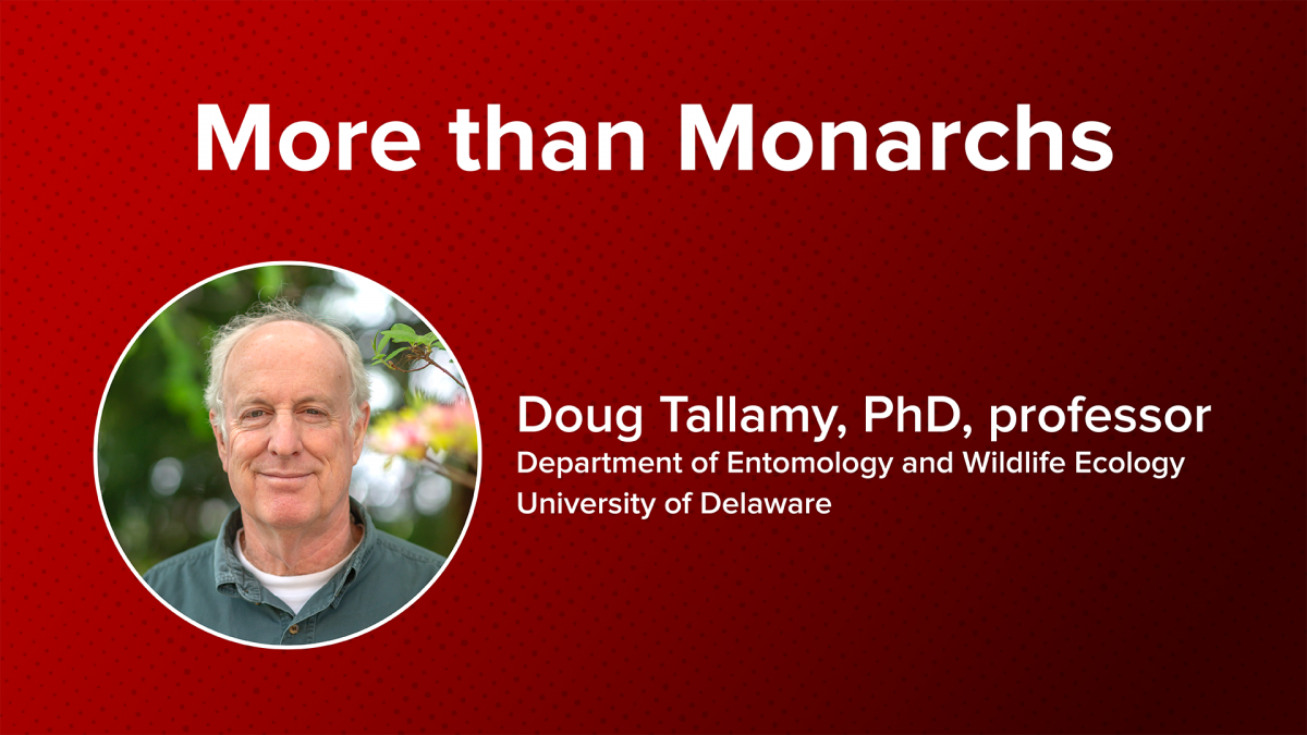 More than Monarchs: Conservation Starts at Home with Professor Doug Tallamy