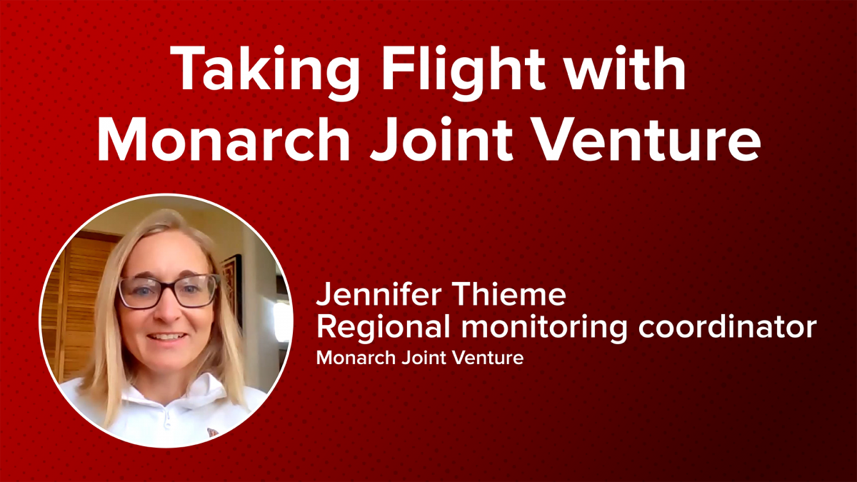 Taking Flight with Monarch Joint Ventures with Jennifer Thieme