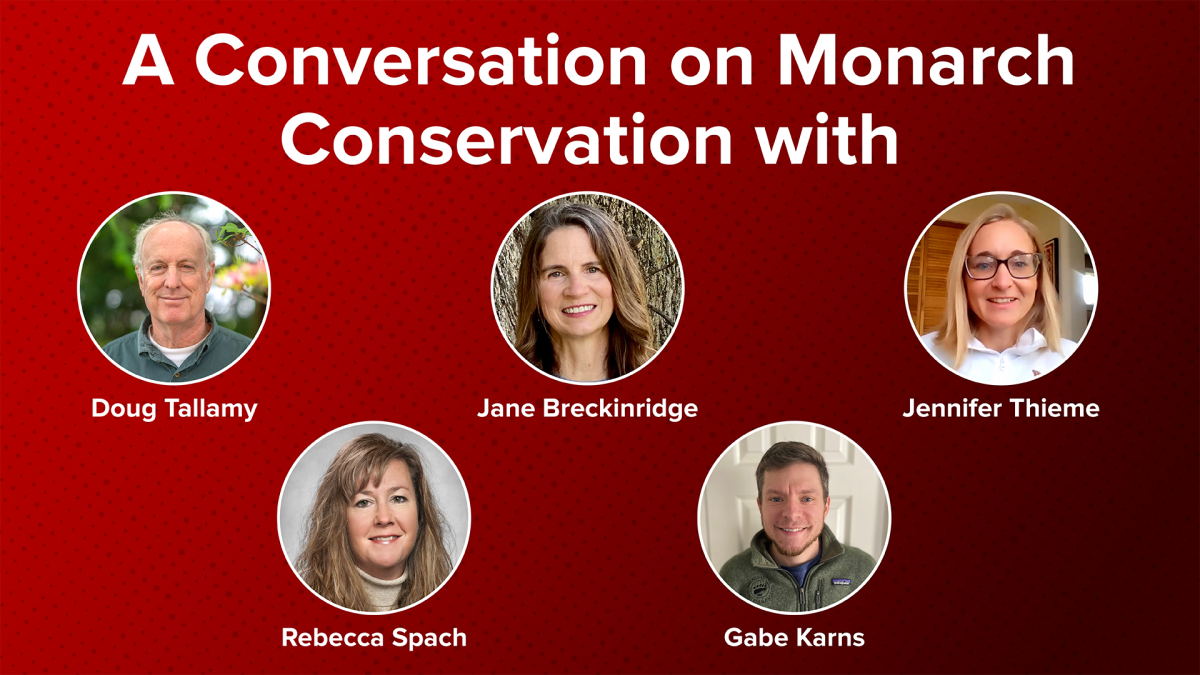 A Conversation on Monarch Conservation