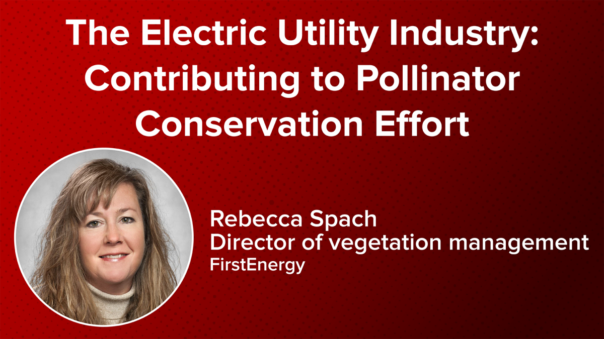 The Electric Utility Industry: Contributing to Pollinator Conservation Effort with Rebecca Spach