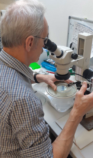 While in Vodnany, Professor Dabrowski visited the Psenicka Lab, where he learned germ cell injection to zebrafish embryos.