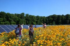 Solar Panel Array at Denison University