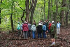 Fungi Workshop, Mansfield Campus 9
