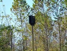 Wildlife Specialist in the School of Environment and Natural Resources quoted in Columbus Dispatch article on project to install bat boxes.