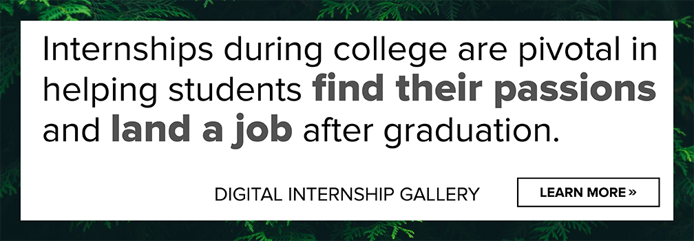 Digital Internship Gallery