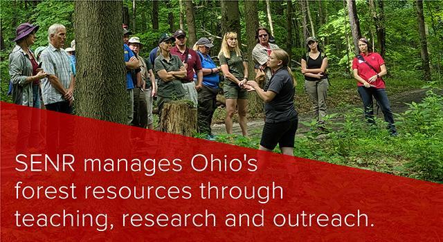SENR manages Ohio's forest resources through teaching, research and outreach.