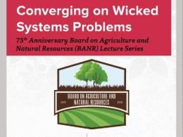 Converging on Wicked Systems Problems
