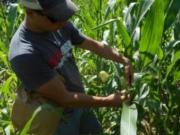 Accepting applications for 2019 ACRE Internship Program