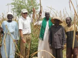 Professor Richard Dick with farmers in Niger beside Guiera senegalensis, an indigenous shrub his research has shown enhances soils, reduces drought stress, and increases crop productivity in the Sahel. (Photo credit: Dr. Tougiani ABASSE)