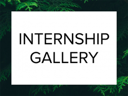 New Digital Internship Gallery is available.