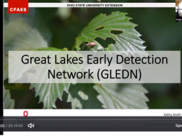 Great Lakes Early Detection Network (GLEDN) Webinar
