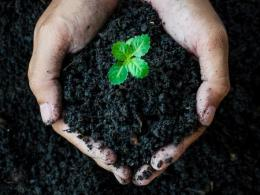 The Composting in Ohio industry tour is for anyone interested in commercial or large-scale composting. Tour stops will be in Huron and Cleveland. (Photo: iStock.)