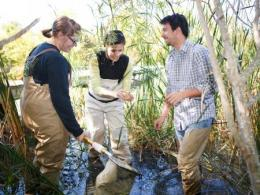 School of Environment and Natural Resources faculty member Lauren Pintor (shown center)  is an investigator on a new NSF Rules of Life grant.
