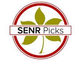 SENR Picks
