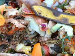 Composting food scraps can prompt people to make other earth-friendly choices, new research has found. Image provided by The Ohio State University.