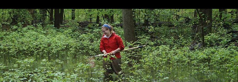 SENR Major in Forestry, Fisheries, and Wildlife